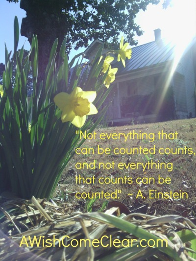 "stop rushing and start living, 'Not everything that can be counted counts, and not everything that counts can be counted.'"" - Einstein"
