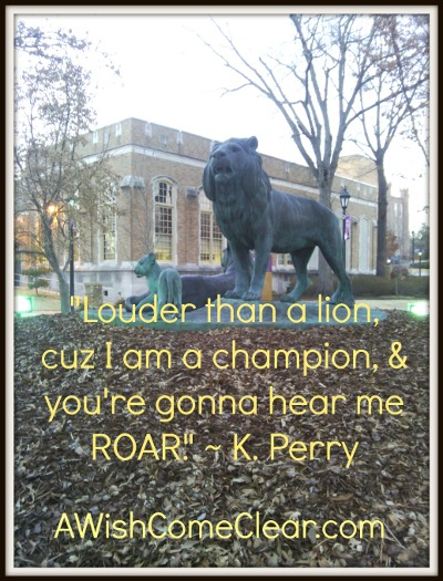 roar, writer who is just starting out