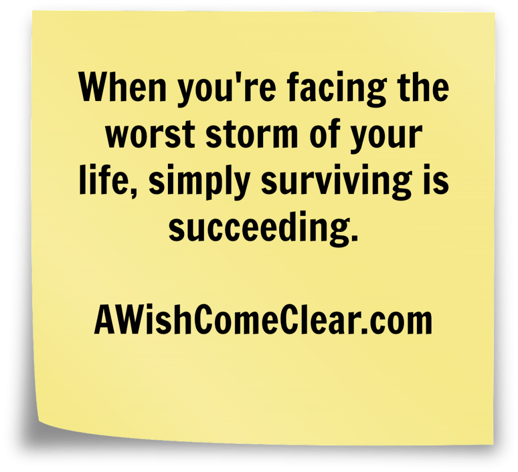 Surviving is Succeeding, when a blizzard hits your life